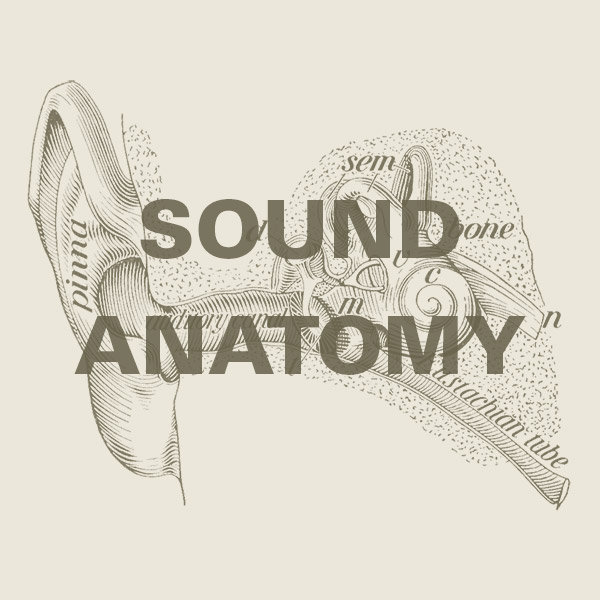 Sound and Anatomy